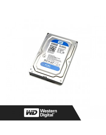 WESTERN DIGITAL 250GB SATA HDD